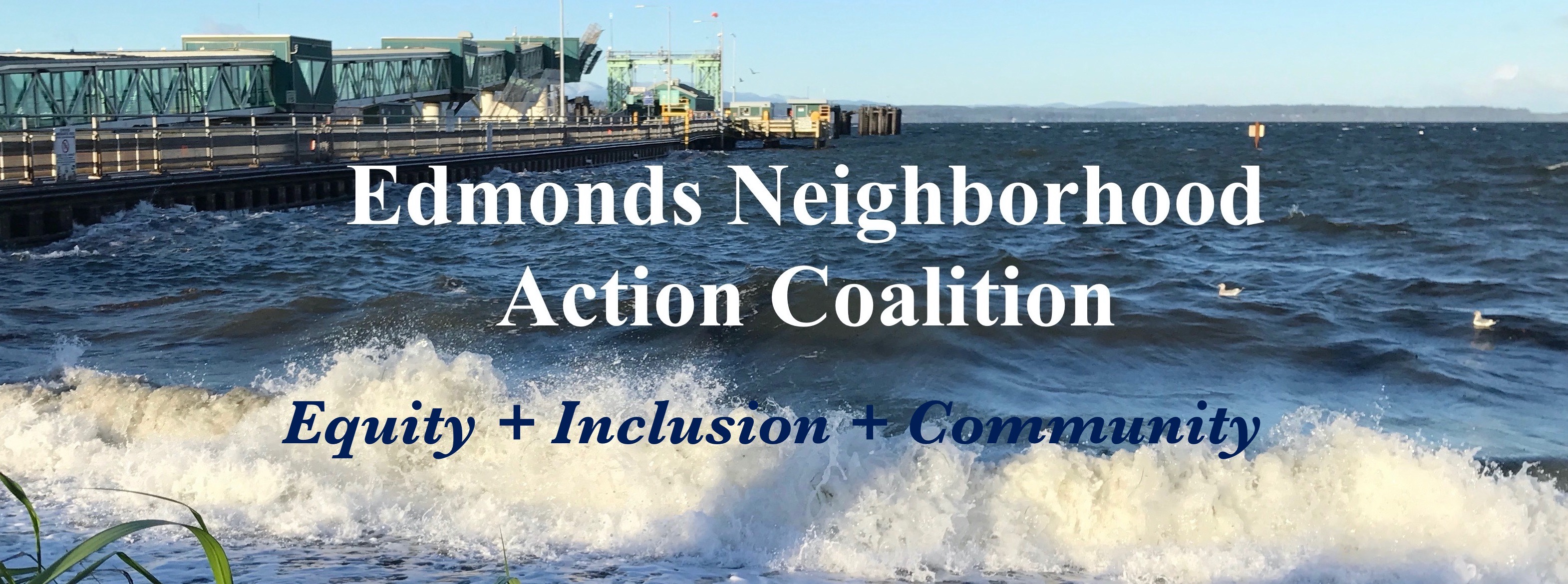Edmonds Neighborhood Action Coalition